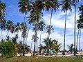 Morrocoy - panoramio.jpg
