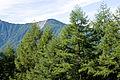Mt.Maechausu 01.jpg