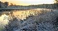 Mulde im Winter k1.jpg