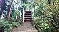 Murou-Temple, The Pagoda - panoramio.jpg
