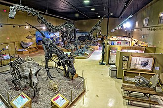 Wyoming Dinosaur Center - Image: Museum overview