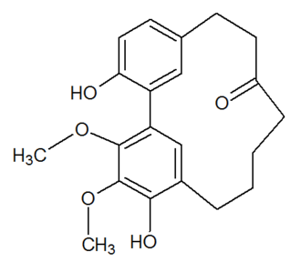 Diarylheptanoid - Myricanone, a cyclic diarylheptanoid.