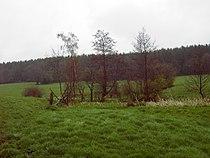 NSG Mausbachquelle1.jpg