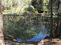 Nacimiento rio Cuervo.JPG