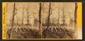 National cemetery, Arlington, Va, by Bell & Bro. (Washington, D.C.) 7.png