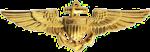 Naval Aviator Badge.png