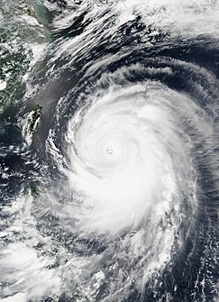 Typhoon Neoguri (2014) 2014 Pacific cyclone