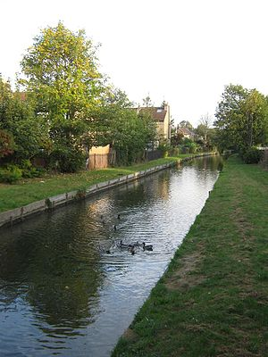 New River (England) - Straight section of the New River passing through Bowes Park.