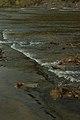 New River Rapids (6279725913).jpg
