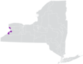 New York State Senate District 60 (2012).png