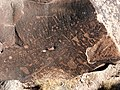 Newspaper Rock Petroglyphs Archeological District.jpg