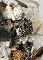 Niveolanite-258778.jpg