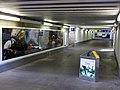 Nordtunnel des Freiburger Hauptbahnhofes mit internationalen Bahnhofsfotos 3.jpg