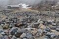 Northern slope of Mount Ruapehu 05.jpg