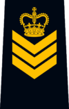 OPP Staff Sergeant.png