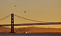Oakland Bay Bridge Sunrise (2084609896).jpg