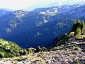 Ohanapecosh Valley camping - panoramio.jpg