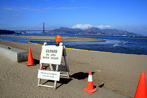 Cosco Busan oil spill - Containment booms languish about the shores and wetlands of Crissy Field.