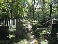 Olšanské hřbitovy (33).jpg
