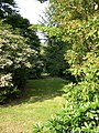 Old Woldringfold Gardens - geograph.org.uk - 48845.jpg