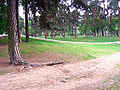 Ostroleka-park5.jpg