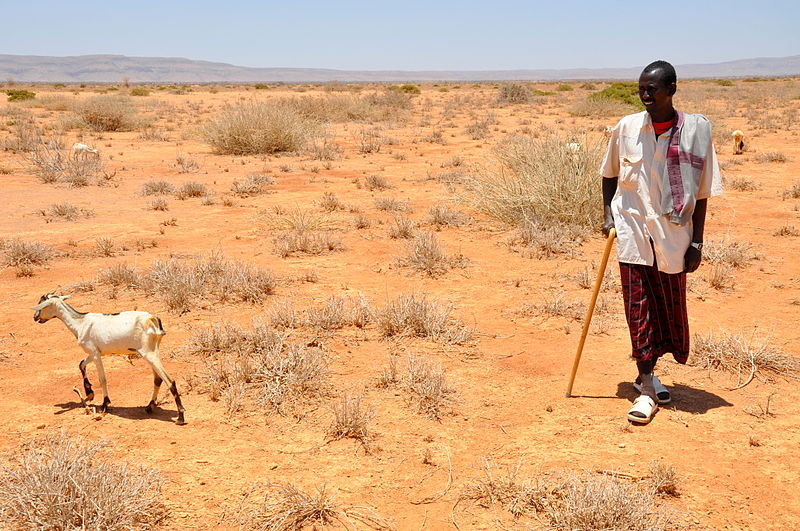 File:Oxfam East Africa - SomalilandDrought011.jpg