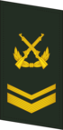 PLAGF-Collar-0705-SSG.png