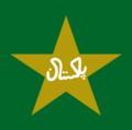 PakistanCricketLogo.png