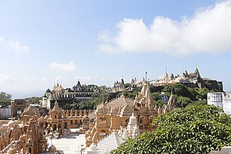 History of vegetarianism - The temple town of Palitana is the world's first vegetarian-only city.