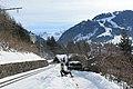 Panoramaweg Saanenmöser - Schönried - Gruben - Gstaad - panoramio (58).jpg