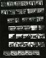 Paolo Monti - Servizio fotografico (Valeggio sul Mincio, 1980) - BEIC 6335208.jpg