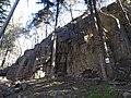 Parete da roccia Avisio Ovest 01.jpg