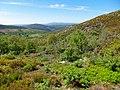 Parque Natural de Montesinho Porto Furado trail (5732610437).jpg