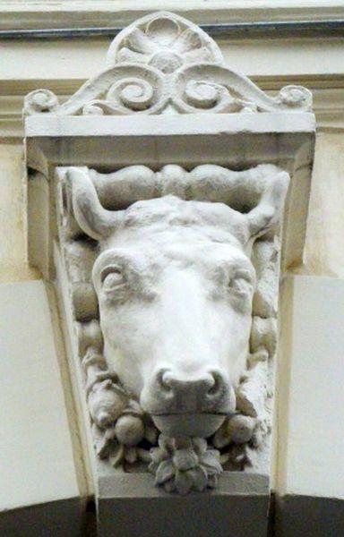 Fichier:Passage Delanos Tête de vache 2.JPG