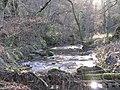 Paxton Dean Burn - geograph.org.uk - 625482.jpg