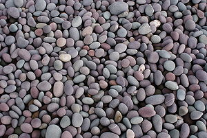 Pebble - Pebbles on a shingle beach in Somerset, England