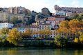 Pentes de la Croix-Rousse depuis le Rhône.JPG