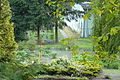 Pharmacognostic Garden Poznan II.JPG