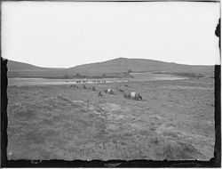 Photograph of the Red Buttes - NARA - 516886