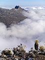 Pico Bolìvar, Venezuela (12679365953).jpg