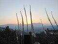 PikiWiki Israel 11224 Meron Mountains landscape.jpg