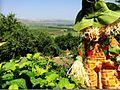 PikiWiki Israel 47851 Geography of Israel.JPG