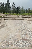 PikiWiki Israel 53338 mosaic in the church of st. bacchus.jpg