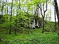 Pod Strážovskou lúkou - panoramio.jpg