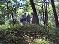 Pomahačův vrch 2.JPG
