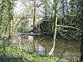Pond at Hales House - geograph.org.uk - 982455.jpg