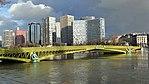 Pont Mirabeau,, Paris, crue de la Seine, janvier 2018 (10).jpg