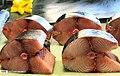 Posht-e Shahr Fish Market 2020-01-22 13.jpg