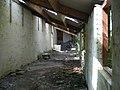 Potting shed at Ynysymaengwyn - geograph.org.uk - 436243.jpg
