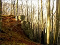 Pri Jánošíkovej bašte - panoramio.jpg
